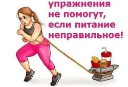 Спорт не помогает похудеть