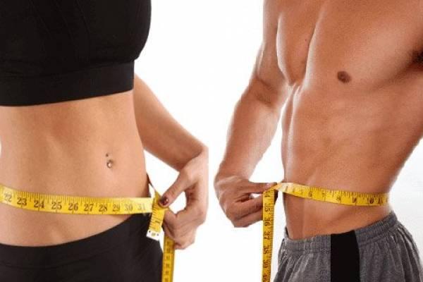Бжу процентное соотношение для похудения