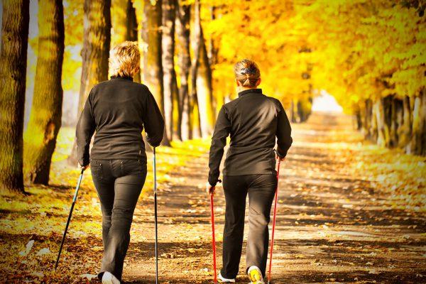 Сколько нужно ходить пешком