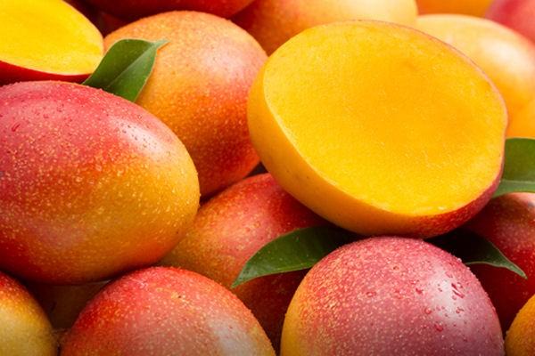 фрукт манго полезные свойства и противопоказания