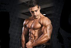 Как нарастить мышечную массу быстро и эффективно