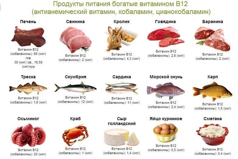 продукты в которых содержится витамин в12